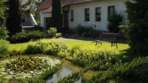 Bilder Garten 011